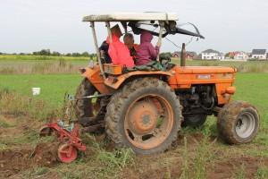 Kartoffelernte mit dem Traktor
